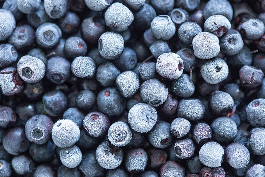 Frozen Blueberries: 'Ice Cold' Edition